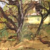 Study Little Danes Garden Milstead Kent 1999