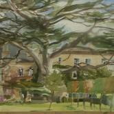 Study of Cedar at Highgrove 2006