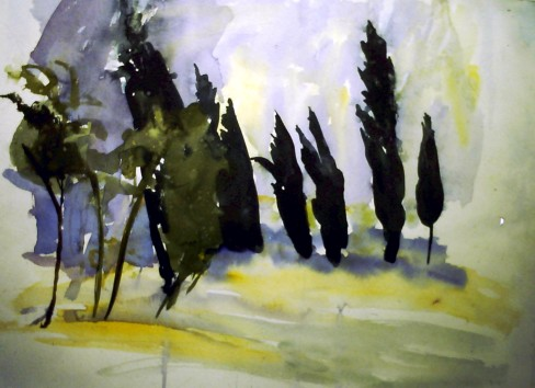Dark trees, light rain, Italy